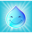 Smiling Drop Of Water And Sunburst vector image vector image