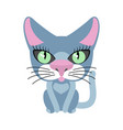 cat blue isolated pet on white background vector image