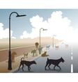 Dog road vector image