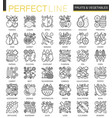 fruits and vegetables stroke outline concept vector image