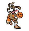 dog basketball mascot vector image