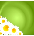 Green summer nature background vector image