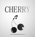 Black and White Cherry logo vector image