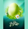 green easter egg poster on blue vector image