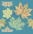 seamless pattern with old autumn leaves vector image