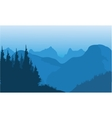 Silhouette of spruce and mountain vector image