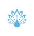 peacock logo vector image