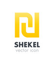 Shekel icon over white vector image