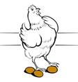 chicken egg vector image vector image