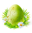 green egg with spots on grass vector image