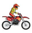 Motorcross rider vector image vector image