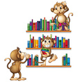 Monkeys and books vector image vector image