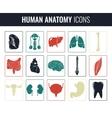 Human internal organs Anatomy set icons vector image