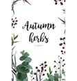 Floral watercolor style card design eucalyptus vector image