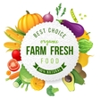 Emblem with fresh vegetables and type design vector image vector image