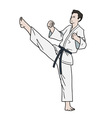 Karate fighter isolated vector image