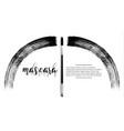 make-up cosmetic mascara brush design vector image