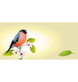 vintage card with bird vector image