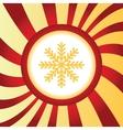 Snowflake abstract icon vector image