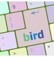 Button keyboard key keypad with bird word vector image