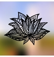 Lotus on the gradient mesh background vector image