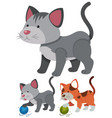 cats playing with yarns vector image