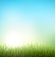 Green grass lawn with sunrise on sky Floral nature vector image