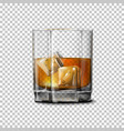 Transparent realistic glass with smokey vector image
