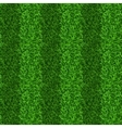 Striped green grass field seamless texture vector image