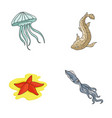 jellyfish squid and other speciessea animals set vector image
