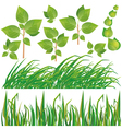 Set of green leaves and grass vector image vector image