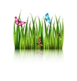 Flying butterflies by the grass vector image