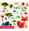 Forest animals - Fox vector image