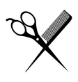 hair saloon design vector image