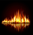 Burning flame vector image
