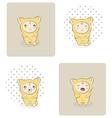 baby kitten vector image vector image
