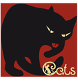 cat on red vector image vector image