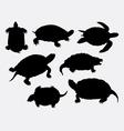 Turtle tortoise amphibian rare animal silhouette vector image