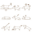thin line caring for dog set vector image