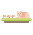 Farm animal Pig with piglets flat style vector image