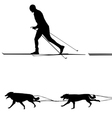Cross country skiers sled and team of dogs vector image