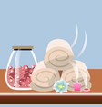 set different spa icons vector image