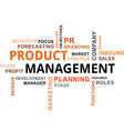 word cloud product management vector image