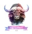 set of watercolor Cute bull vector image