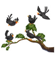 Black birds vector image