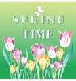 Spring background with snowdrops vector image