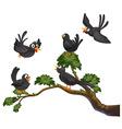 Black birds vector image