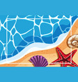 border template with shells on the beach vector image
