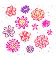Doodle sketch flowers vector image