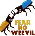 Fear No Weevil vector image